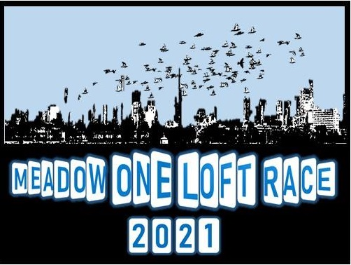 Meadow One Loft Race 2020
